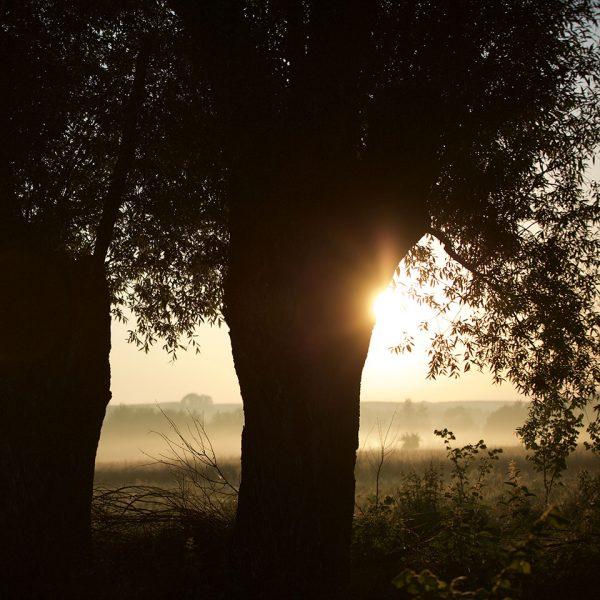 Dobrocka-Dolina-widoki-04